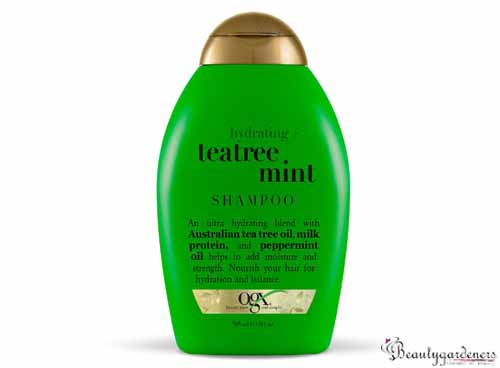 OGX mint hydrating shampoo copy